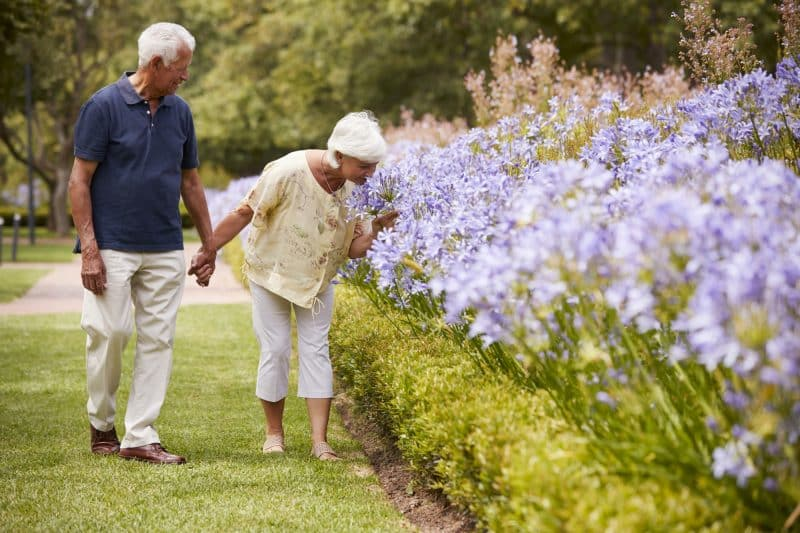 senior couple walking through a garden